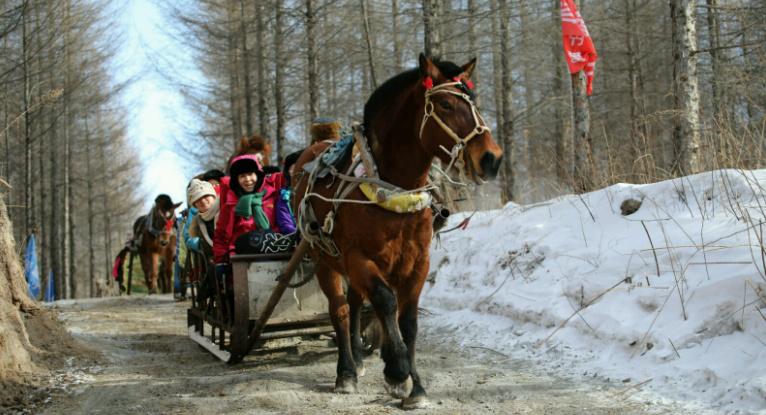 冬令营培训