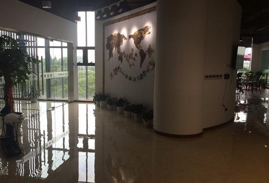 宁波零基础小学英语培训哪里有?