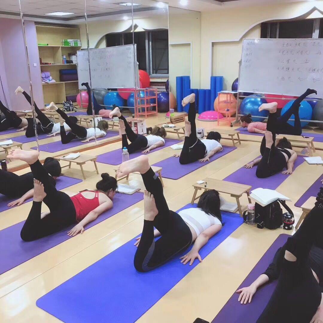 沈阳威思丽瑜伽学校带你感受瑜伽流动之美_流瑜伽招生
