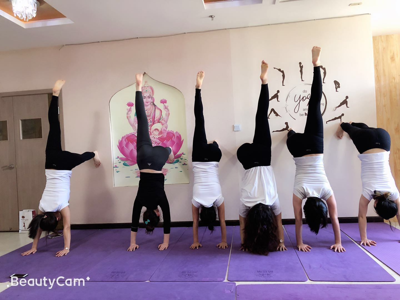沈阳威思丽阴瑜伽教练课程怎么样