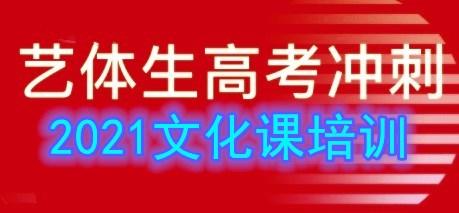 2021云南省艺术生怎么学文化?