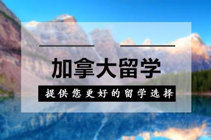 上海新通留学