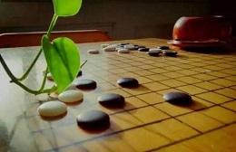 常州貝弈少兒圍棋培訓中心