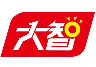 山东大智教育集团股份有限公司