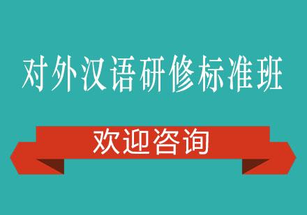 对外汉语研修标准班