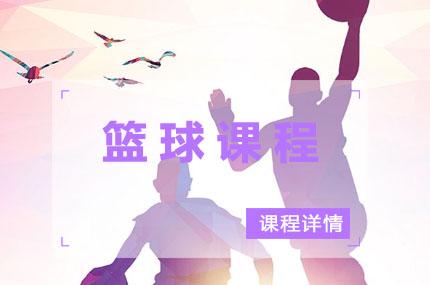 上海赤菟体育青少年篮球