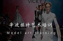 沈阳辛迪专业的模特培训机构