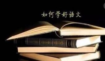 3648.com新天际培训学校