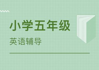 郑州专业的小学五年级英语辅导班在哪里