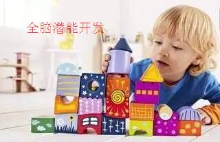 合肥七田国际教育 庐阳分校